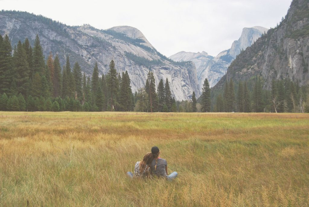 Two people sitting in field, observing view of trees and mountains